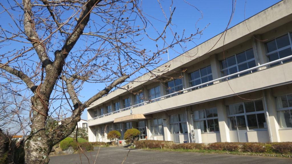 学校スタジオ・桜の木・まだ開花してません・桜の花なめで撮影したい