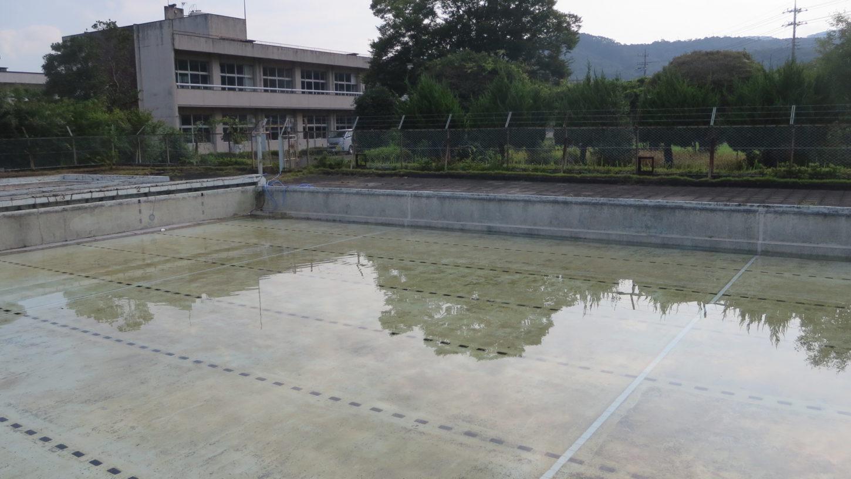いろいろ撮影できる学校スタジオのプール・水入れ始めました