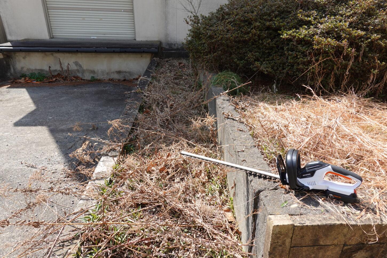 学校スタジオ・外周りの清掃・雑草駆除