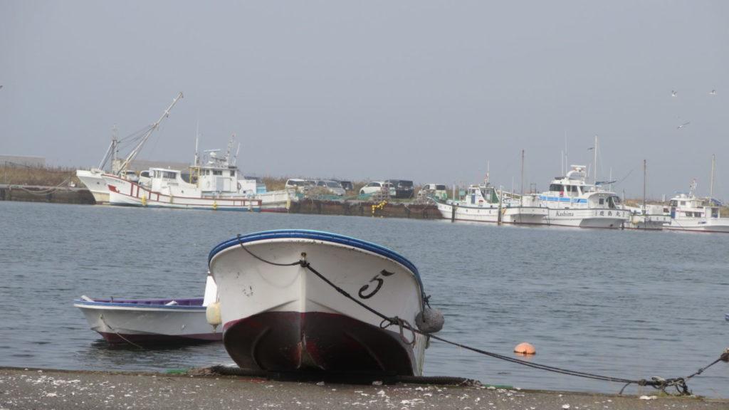 撮影用・生き物・調達・海洋生物・動物プロの仕事・生きた状態で輸送・バラエティー番組・海・酸素ボンベ・袋詰め