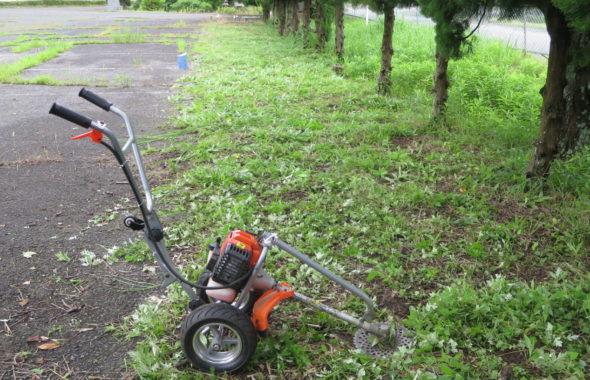 いろいろ撮影できる学校スタジオ・飼育小屋付近の草刈完了