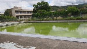 いろいろ撮影できる学校スタジオのプール・撮影・コロナウイルスで使えなくなった・設定・緑色の水にしました。