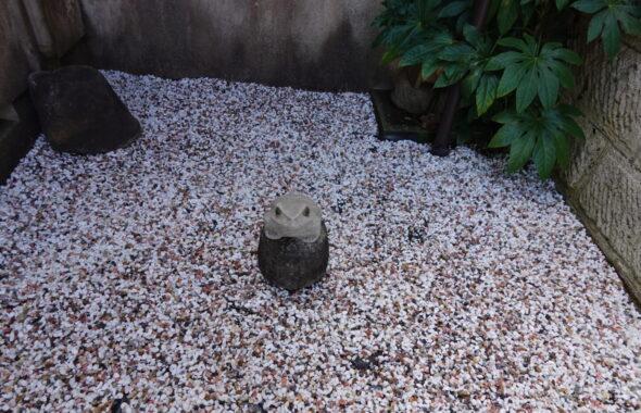 登録有形文化財橋本旅館スタジオ・中庭・改装中・カエルの石像・庭石
